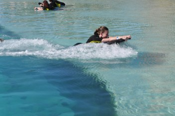 The Dolphin pushing me through the water - we also swam in deeper water with the dolphin
