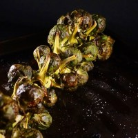 Balsamic roasted brussel sprouts on the stalk