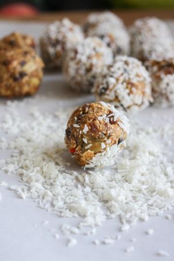 raw-superfood-bars-balls-13