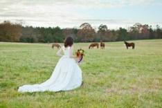 Urban Petals, bridal portrait on horse farm, outdoor rustic bridal portrait, horses, bride, pasture