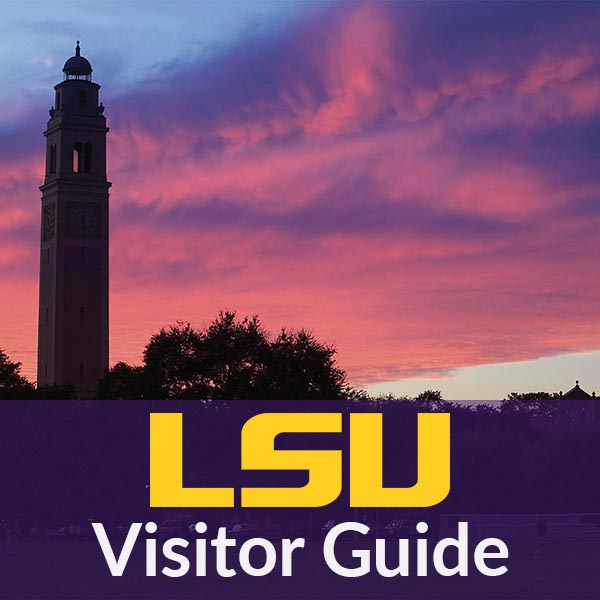 LSU Website Portfolio