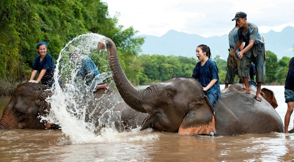 riding an elephant with Rustic Pathways