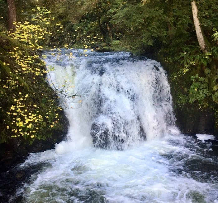 Waterfall in Portland