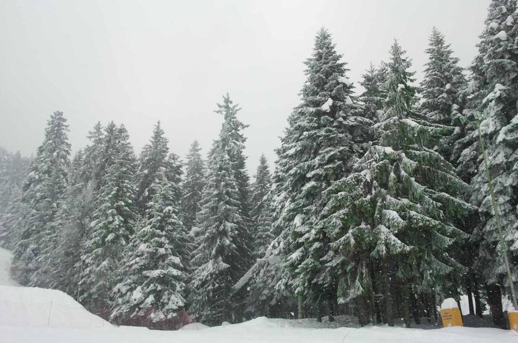 Borovets ski resort