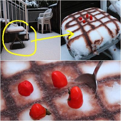 有機剉冰蛋糕