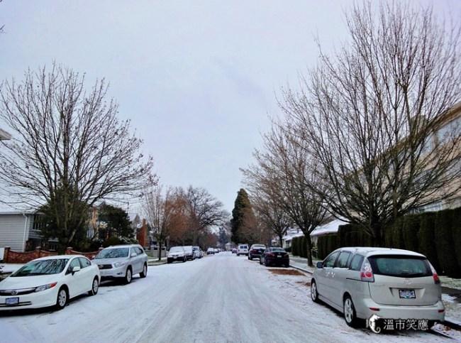 DSC094642013 first snow