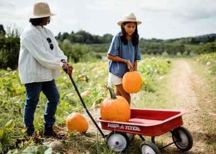 溫哥華旅遊|秋天必做三件事:走玉米迷宮、採蘋果、逛南瓜田
