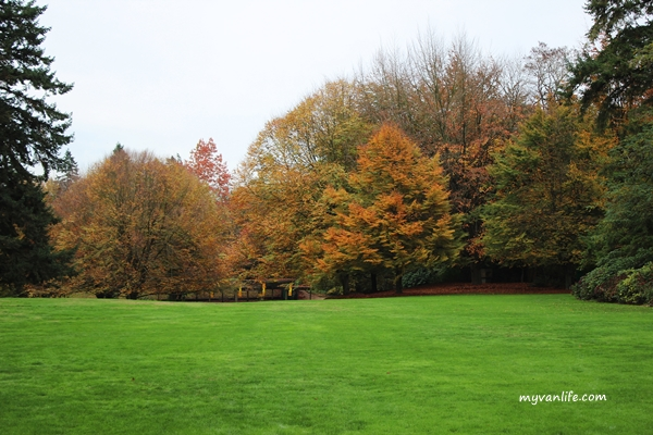 natureIMG_6819VanDusenFall