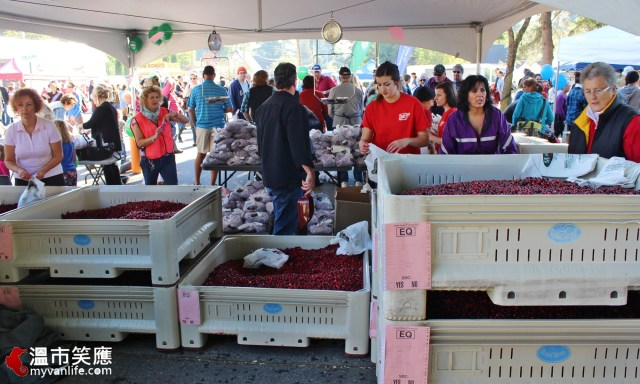 eventimg_7637cranberryfest