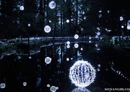 {溫哥華旅遊} 一顆心懸吊在半空中 — 正確觀賞聖誕燈飾的方式