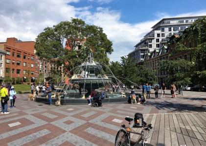 多倫多旅遊|市中心必遊!毛小孩們的噴水池