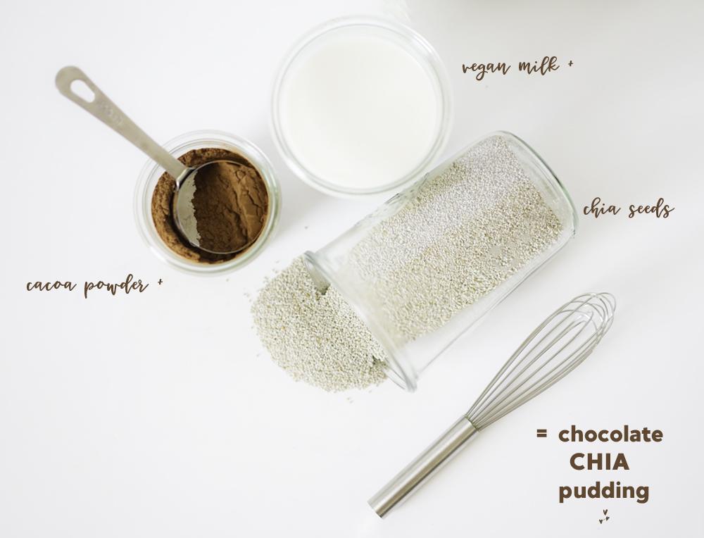 Chia Seeds + Chocolate + Vegan Milk = Chocolate Chia Pudding