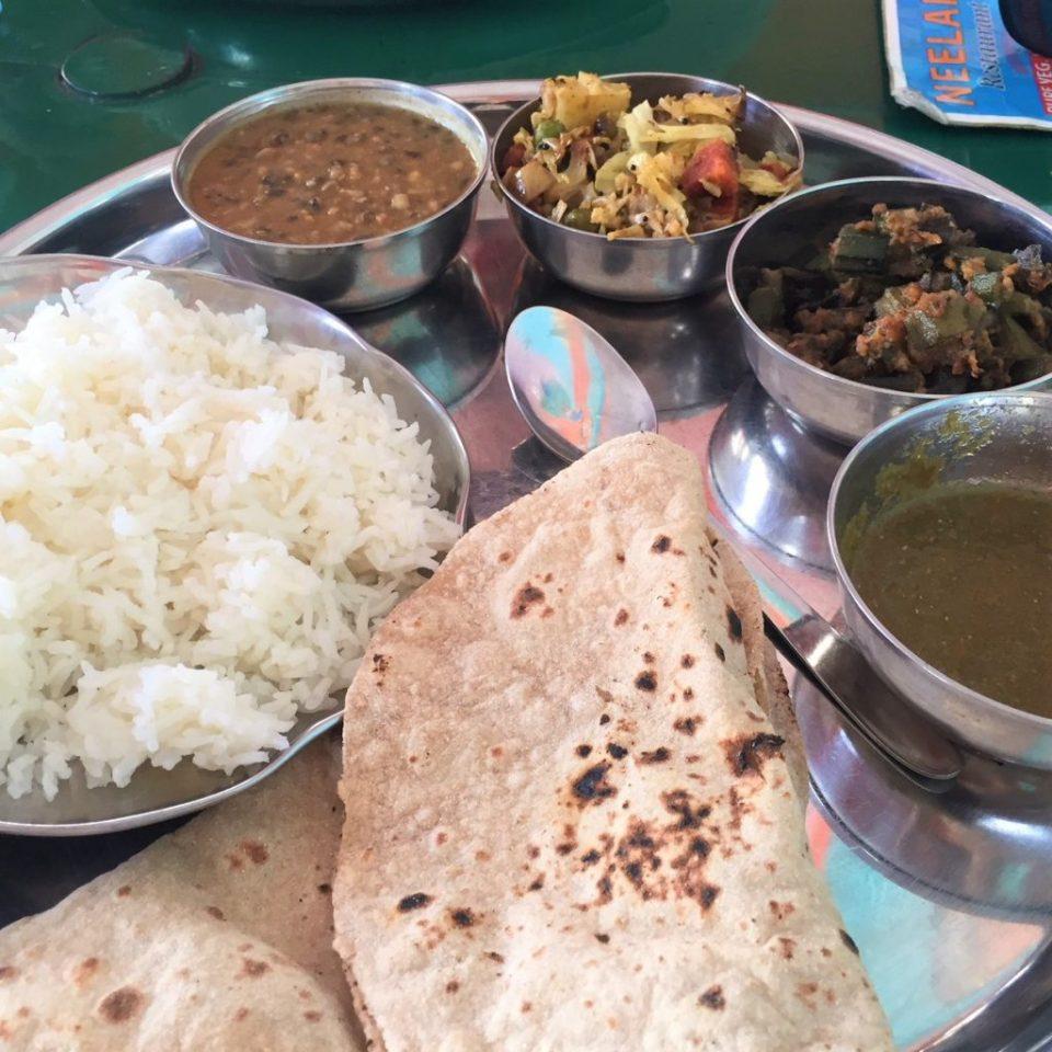 vegan food udaipur