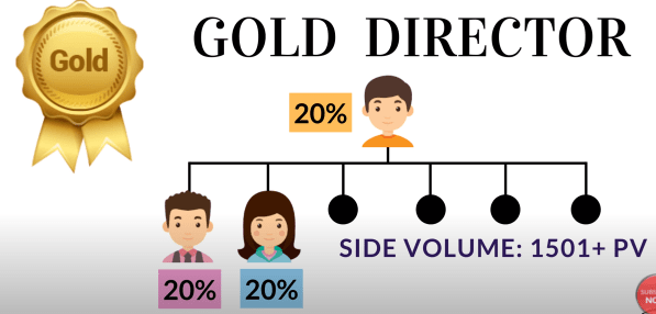 Gold Director