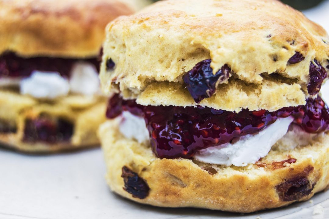 Vegan Cranberry Scones
