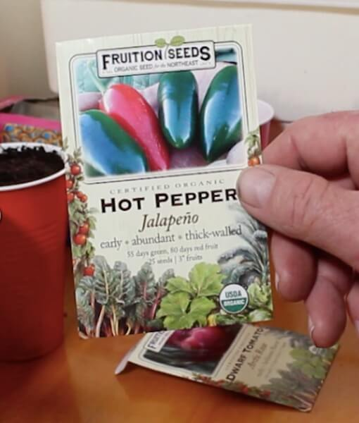 double-cup-method of planting seeds
