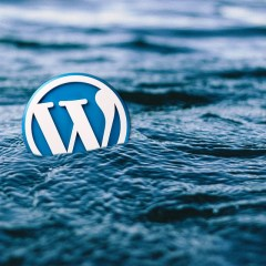 Types of WordPress Hosting Plans for Your Help Now