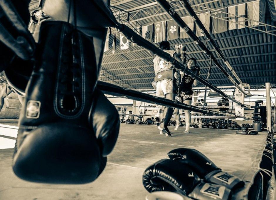 Suwit Muay Thai training camp