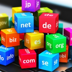 "What Are Domain Names & Why To Choose "".in"" domain?"