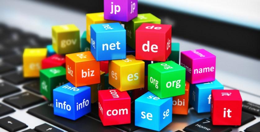 .in domain name