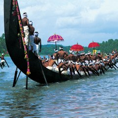 4 Most Popular Things To Do In Kerala