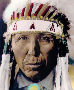 Red Bird Cheyenne Native American 1927