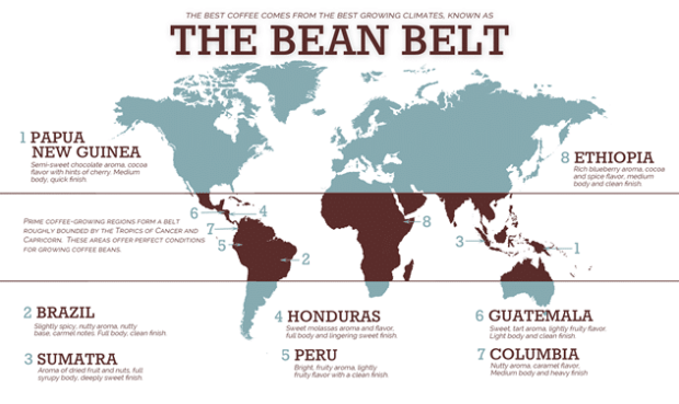 coffee bean belt map