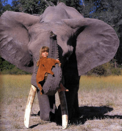 Tippi, who spent her childhood in Namibia among wild animals and tribes people.