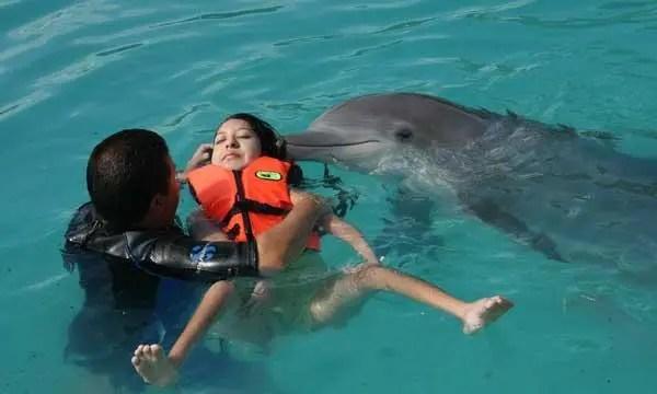 delfinoterapia1