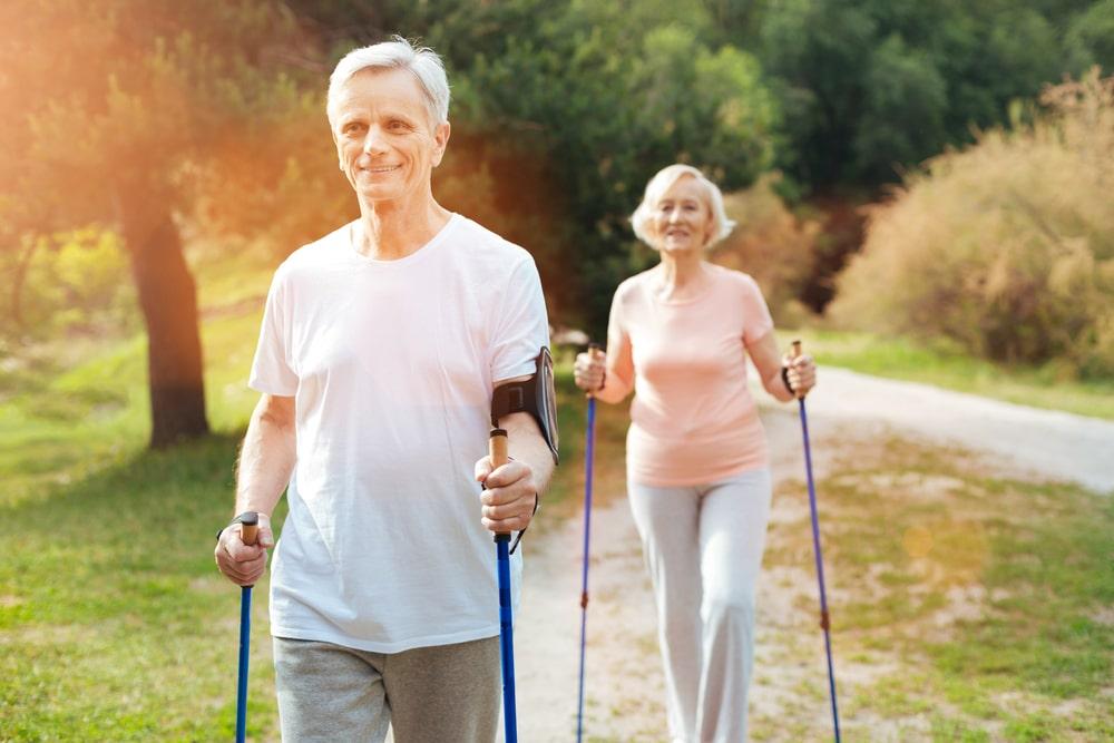 elderly using a walking pole