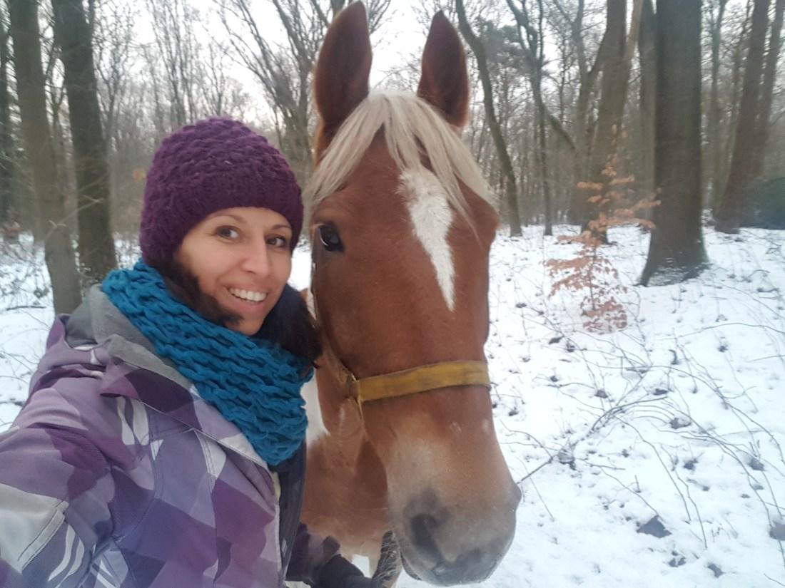 wandeling paard sneeuw