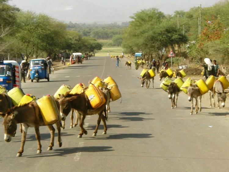 Onderweg in Ethiopië