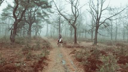 Paardrijden Hoge Veluwe