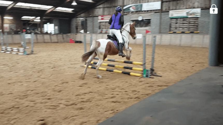 springen wedstrijd paardrijden