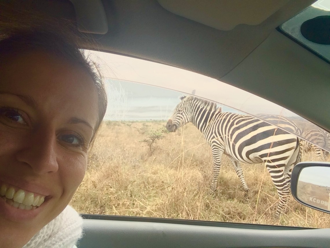 Internationale baan nairobi zebra