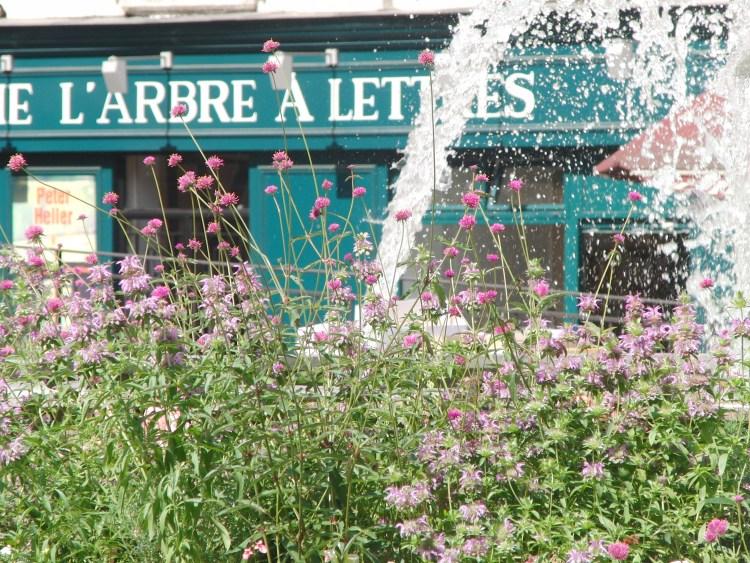 Op het terras in het Latijns Kwartier Parijs Frankrijk