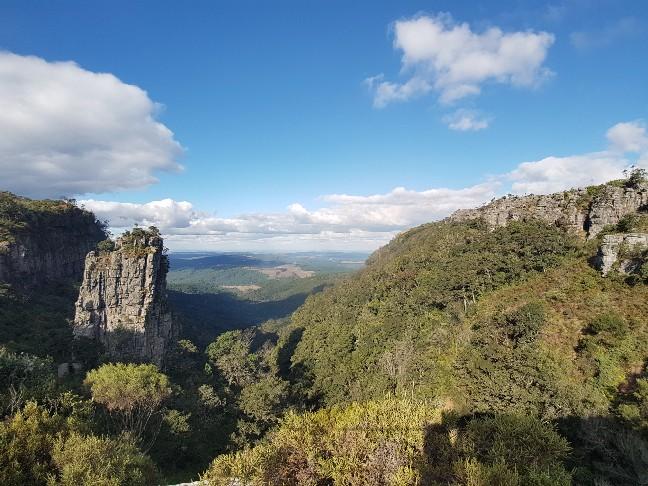 God´s Window Natuur Zuid Afrika