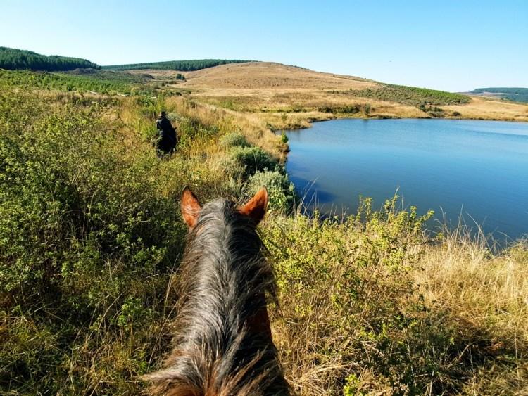 paardrijden Zuid Afrika
