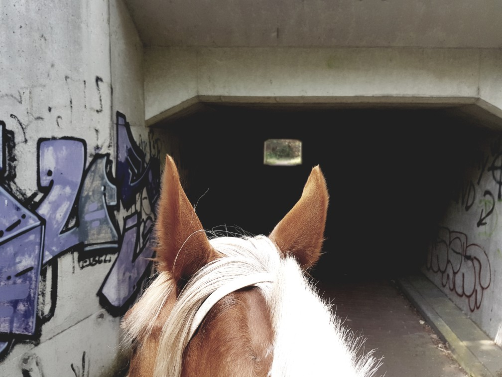 Eng tunneltje onderweg