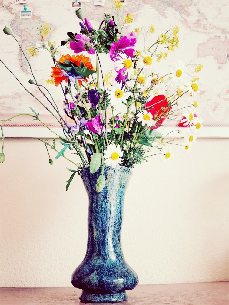 Mooie bloemen op een braakliggend terrein geplukt