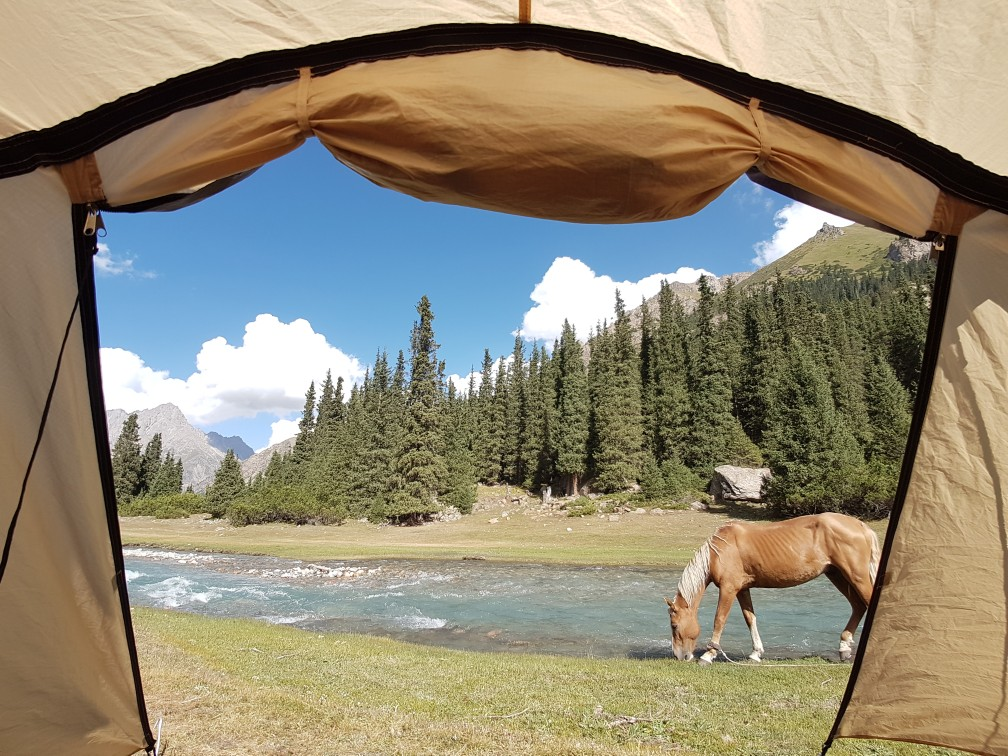 Weekoverzicht #33 & 34: vakantie Kirgizië, paarden, paarden, paarden