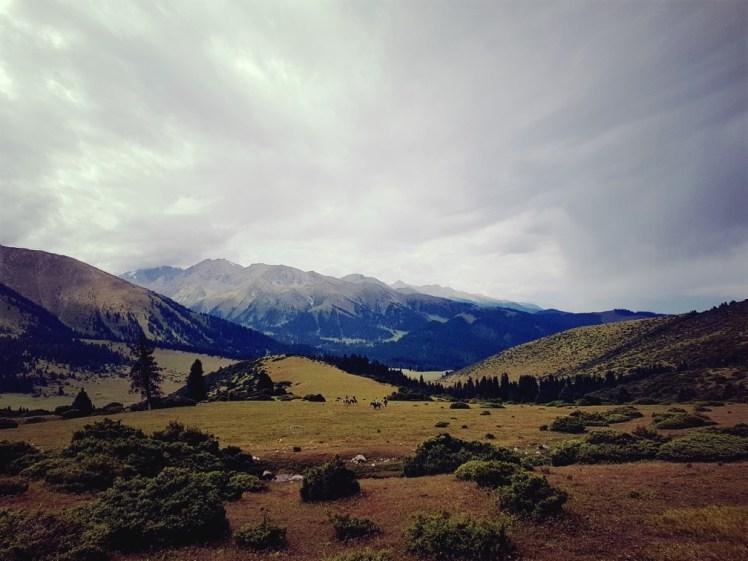 Kirgizië paard bergen trektocht
