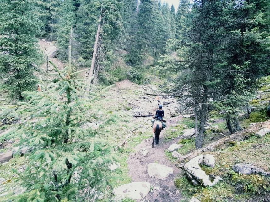 Kirgizië bergen stroompje