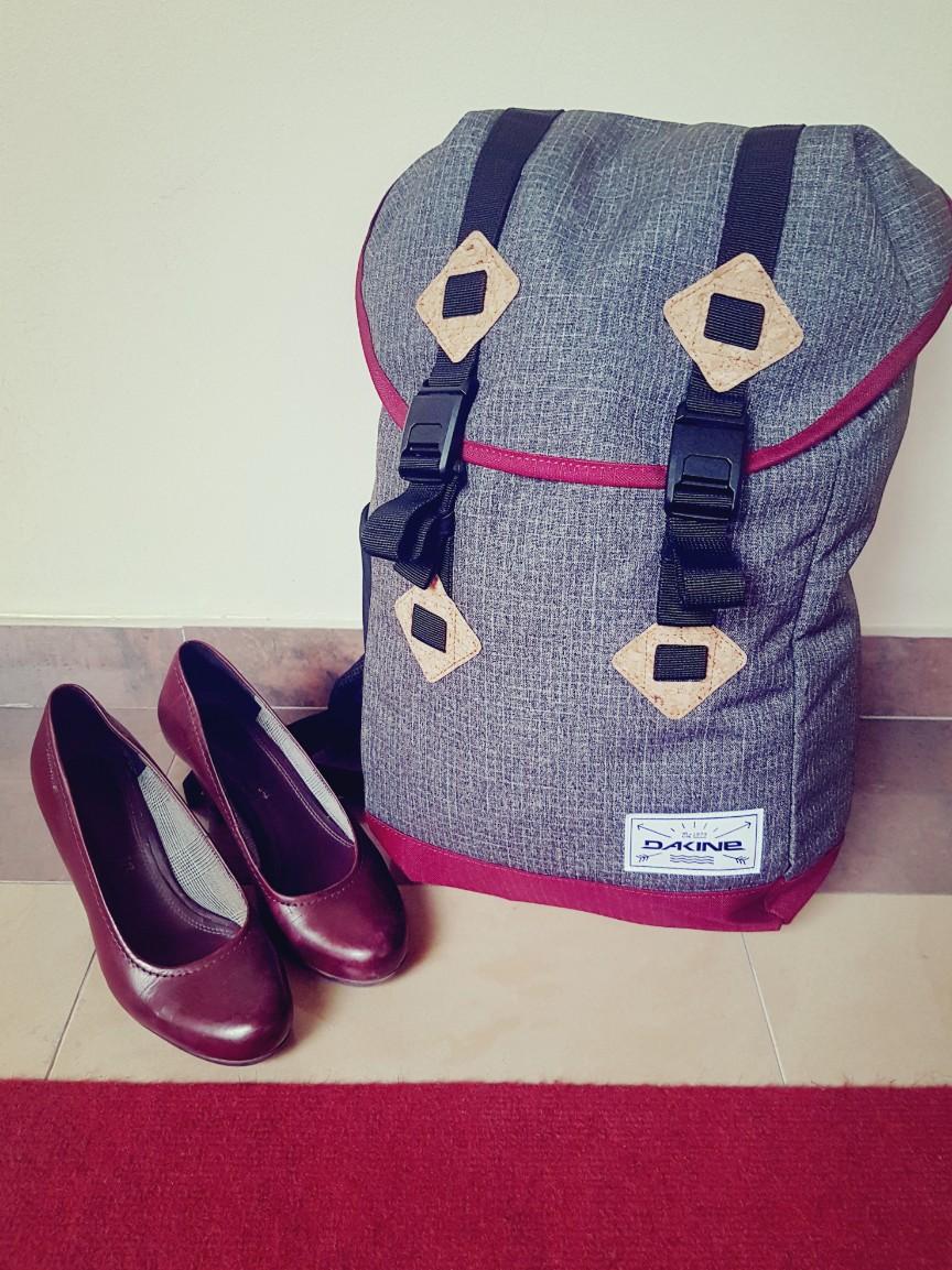 Onmisbaar op reis: een rugzak geschikt als handbagage - Dakine Trek II 26L