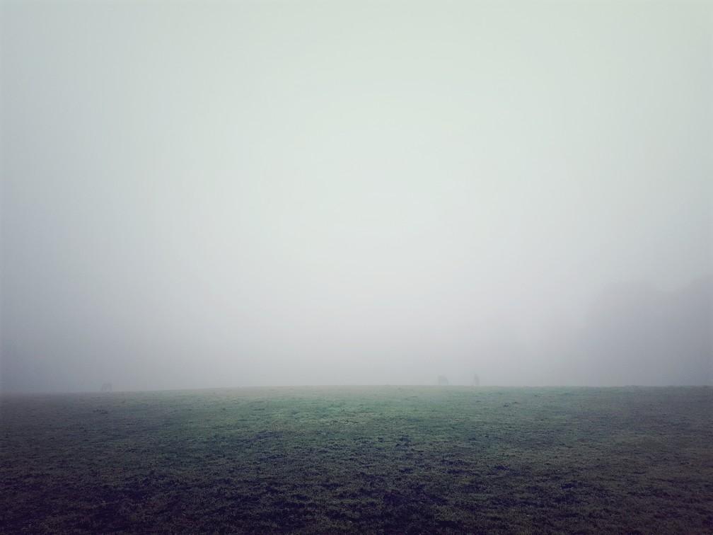 Soura in de mist