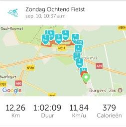 Paardrijden endurance training runkeeper tracking
