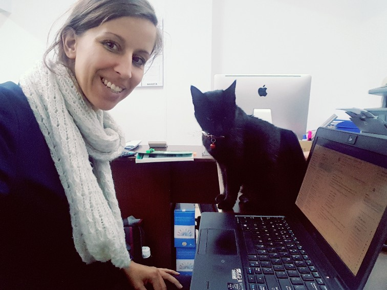 werkplek kat