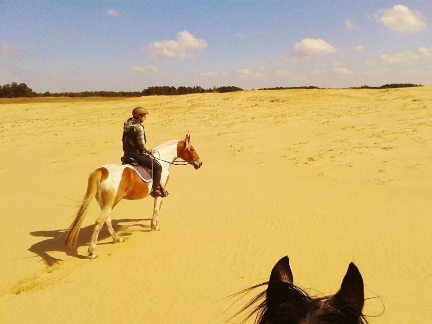 Paardrijden National Park de Hoge Veluwe zandverstuiving