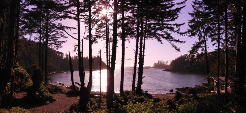 Vancouver Island Canada (3)