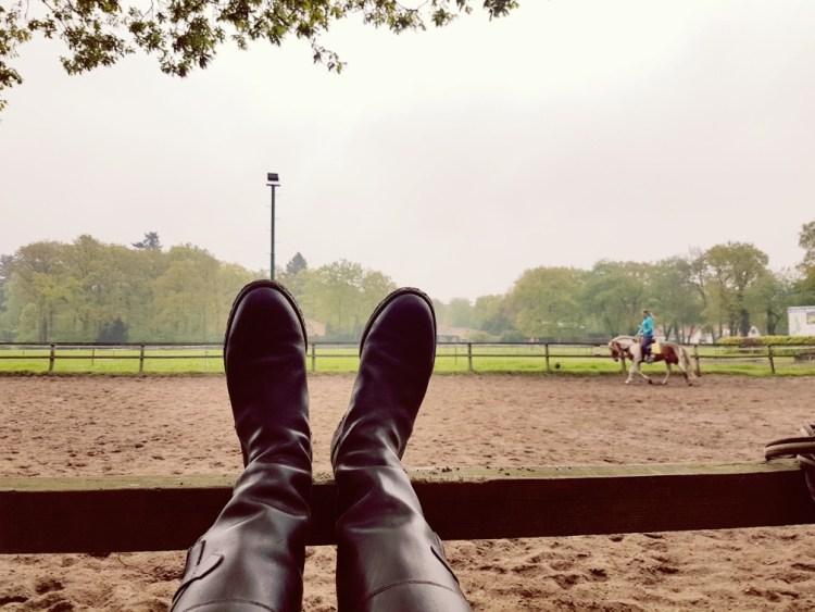 Dressuur bonte pony buitenbak